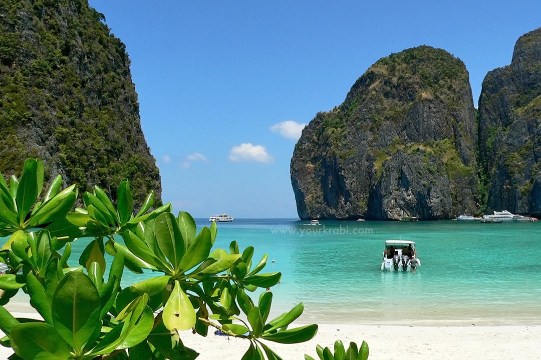 Phi Phi Island Tours from Krabi Your Krabi