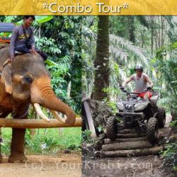 Elephant trekking + ATV combo tour