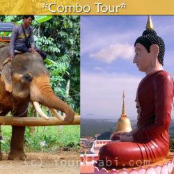 Elephant trekking + Tiger Cave Temple combo tour