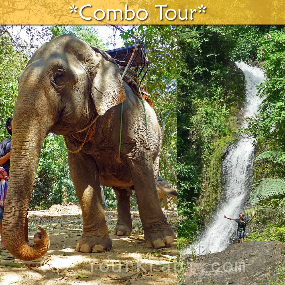 Elephant Trekking + Huay Toh Waterfall