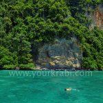 snorkeling-monkey-bay